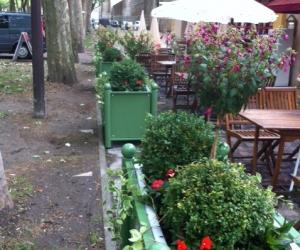 Jardinières fleuries d'une terrasse de restaurant à VERSAILLES