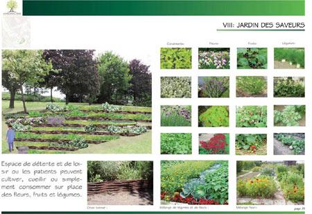 Conception jardin - Création jardin et entretien Ile de France