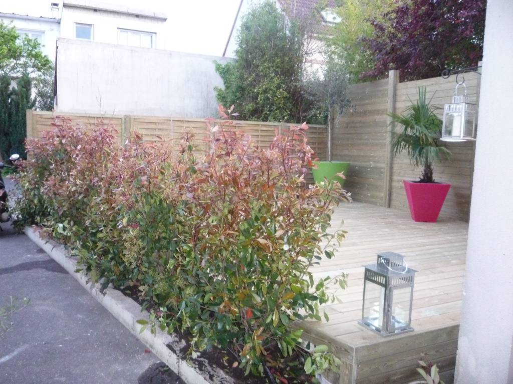 Pin terrasse agr ment e de haie de lierre pr te planter on pinterest for Plantes pour terrasses