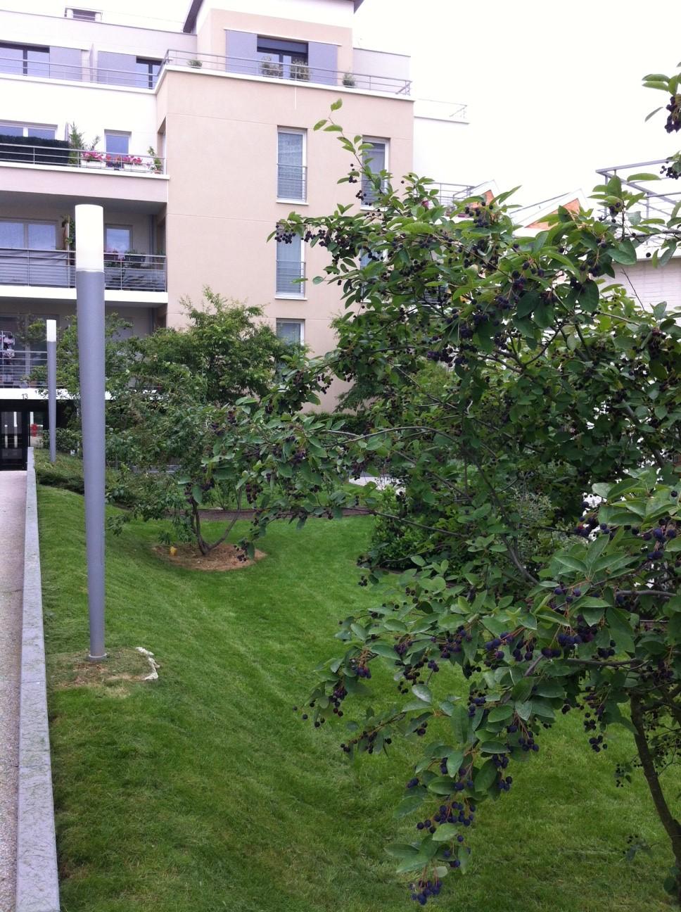 Entretien de jardin des copropri t s 91 92 94 78 for Jardin de 78