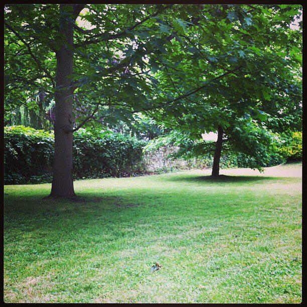 Exemples espaces verts services paysagistes arboriflore for Entretien jardin copropriete
