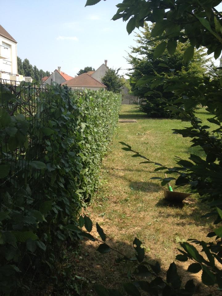 Entretien de jardin des copropri t s 91 92 94 78 for Entretien jardin 94