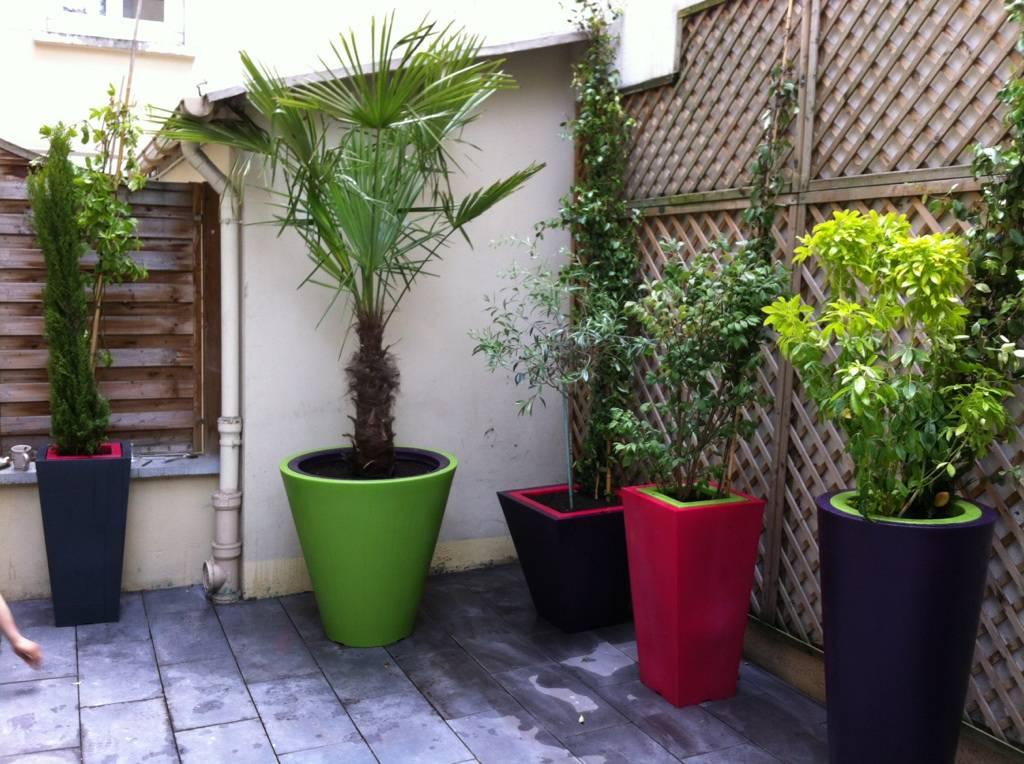 Am nagement terrasse int rieur paris 18 me arboriflore for Terrasse et cie paris 18