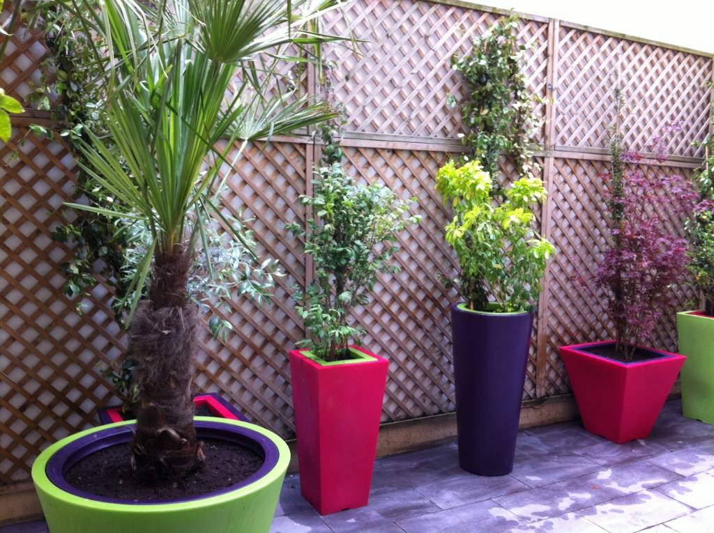 Am nagement terrasse int rieur paris 18 me arboriflore for Decoration murale jardin
